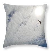 Flying High Throw Pillow by Ekta Gupta