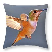 Flying Jewel Throw Pillow
