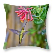 Flying Jewel Throw Pillow