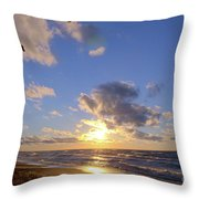 Flying Onshore Two Throw Pillow