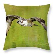 Flying Osprey Throw Pillow