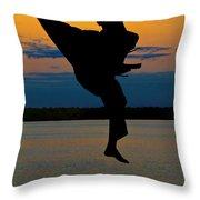 Flying Over Muskegon Lake Throw Pillow