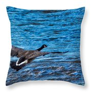 Flying Over Rough Waters Throw Pillow