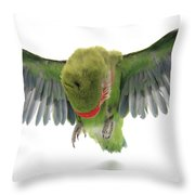 Flying Parrot  Throw Pillow