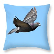Flying Pigeon . 7d8640 Throw Pillow