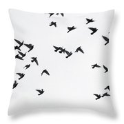 Flying Pigeons Throw Pillow