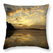 Flying Reflections Throw Pillow