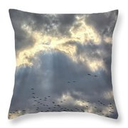 Flying Through Sun Rays 2 Throw Pillow