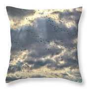 Flying Through Sun Rays Throw Pillow