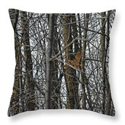 Flying Through The Trees Of The Forest Throw Pillow