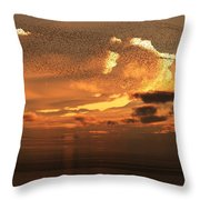 Flying To South Throw Pillow