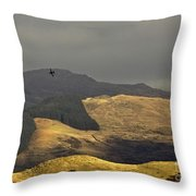Flying To The Fields Of Gold Throw Pillow