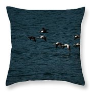 Flying Under The Radar Throw Pillow