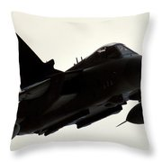 Flypass Throw Pillow