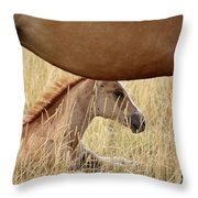 Foal And Mare In A Saskatchewan Pasture Throw Pillow