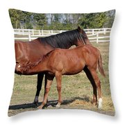 Foal Feeding With Milk Ranch Scene Throw Pillow