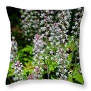Foam Flower Tiarella Cordifolia Throw Pillow