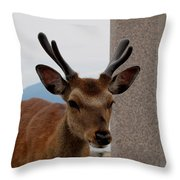 Focus Deer Throw Pillow