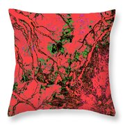 Focus Of Attention 10 Throw Pillow