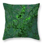 Focus Of Attention 11 Throw Pillow