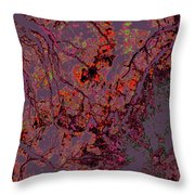 Focus Of Attention 14 Throw Pillow