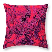 Focus Of Attention 19 Throw Pillow