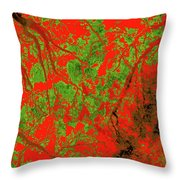 Focus Of Attention 21 Throw Pillow