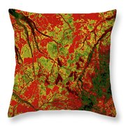 Focus Of Attention 22 Throw Pillow