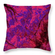 Focus Of Attention 23 Throw Pillow