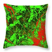 Focus Of Attention 24 Throw Pillow