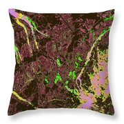 Focus Of Attention 28 Throw Pillow