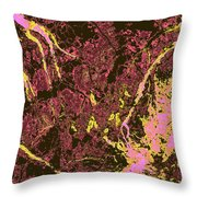 Focus Of Attention 29 Throw Pillow
