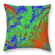 Focus Of Attention 3 Throw Pillow