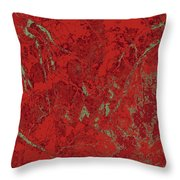 Focus Of Attention 30 Throw Pillow