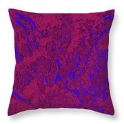 Focus Of Attention 31 Throw Pillow