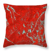 Focus Of Attention 35 Throw Pillow