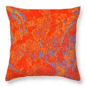 Focus Of Attention 38 Throw Pillow