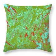 Focus Of Attention 39 Throw Pillow