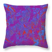 Focus Of Attention 40 Throw Pillow