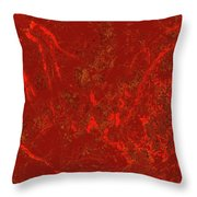 Focus Of Attention 41 Throw Pillow