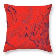 Focus Of Attention 42 Throw Pillow
