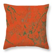 Focus Of Attention 43 Throw Pillow