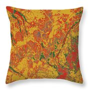 Focus Of Attention 44 Throw Pillow