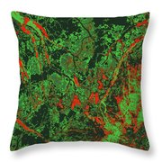 Focus Of Attention 47 Throw Pillow