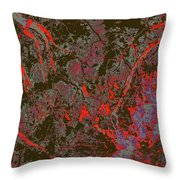 Focus Of Attention 50 Throw Pillow