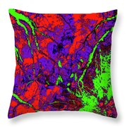 Focus Of Attention 6 Throw Pillow