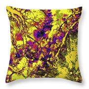 Focus Of Attention 8 Throw Pillow