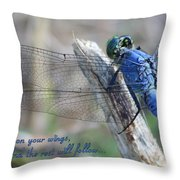 Focus On Your Wings Throw Pillow