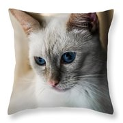 Focused Throw Pillow