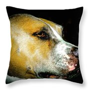 Focused Pitbull Throw Pillow
